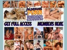 Bisexual Porn
