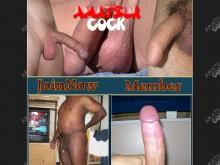 Amateur Cock